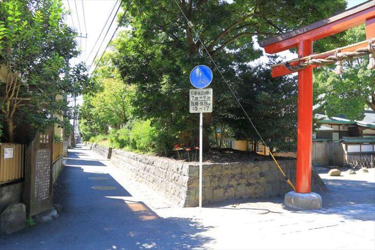 鶴岡八幡宮 東側の鳥居と彼岸花が咲く通り