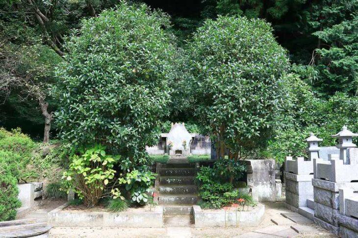 妙本寺 源媄子の墓