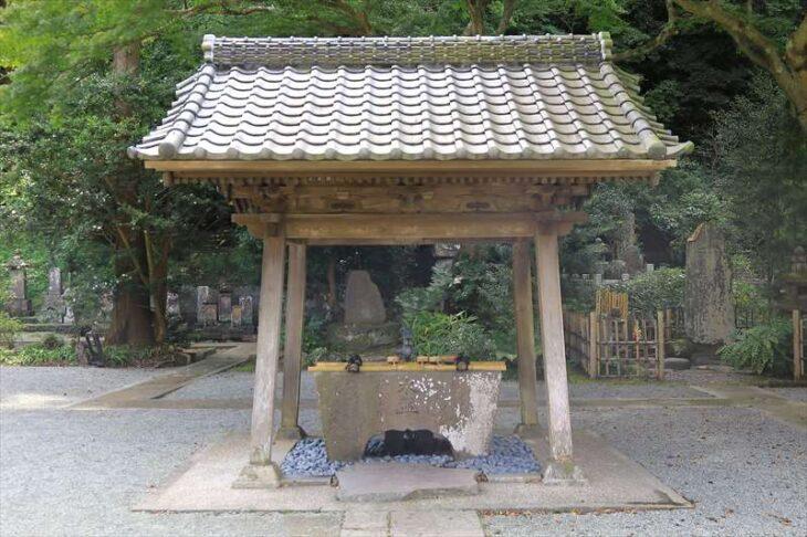 妙本寺の手水舎